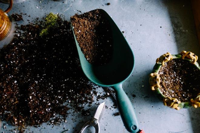 почва для дипладении