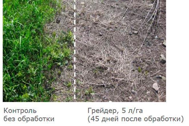 грейдер до и после применения