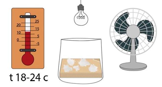 температура для грибов