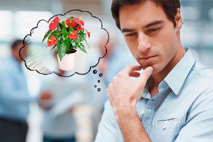 мужчина думает про цветок
