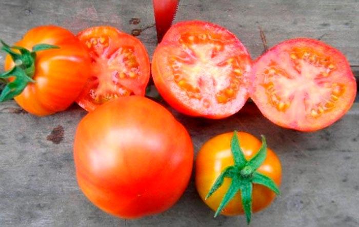 срез томатов