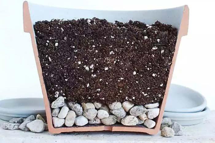 почва и дренаж