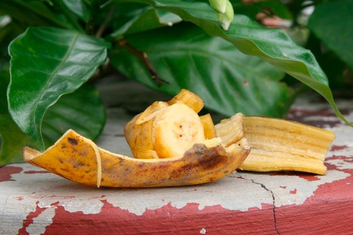 цветок и банан