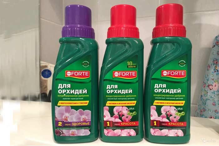 Обработка орхидей препаратом Бона Форте